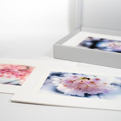 Archiva set with Awgami Washi
