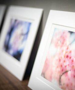 Passe-partout fine art prints