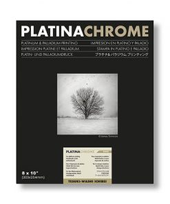 "Platinachrome 8X10"""
