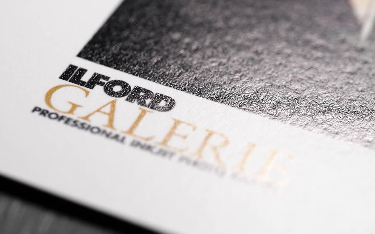 ILFORD Gold Fibre Rag